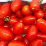 2017.09.07野菜 トマト