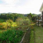 ガーデニング・菜園可能な庭