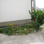 【鴨川市江見内遠野】海まで徒歩1分の貸家 花壇スペース